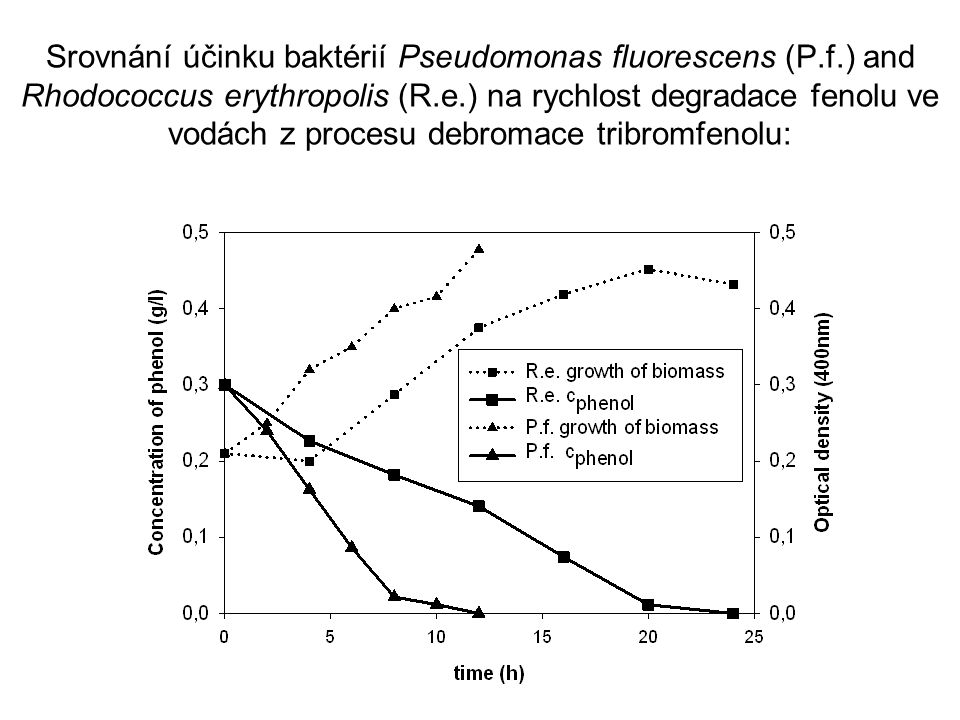 Srovnání účinku baktérií Pseudomonas fluorescens (P. f