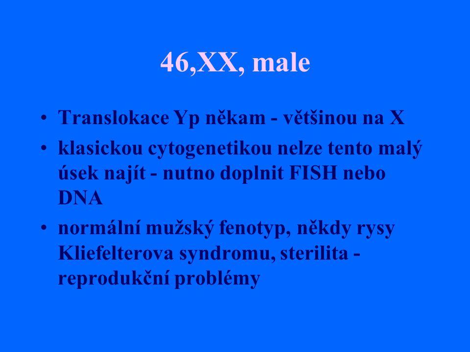 46,XX, male Translokace Yp někam - většinou na X