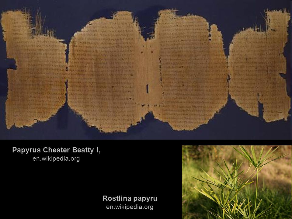 Papyrus Chester Beatty I, en.wikipedia.org