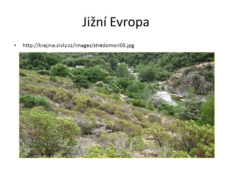 Jižní Evropa http://krajina.zivly.cz/images/stredomori03.jpg