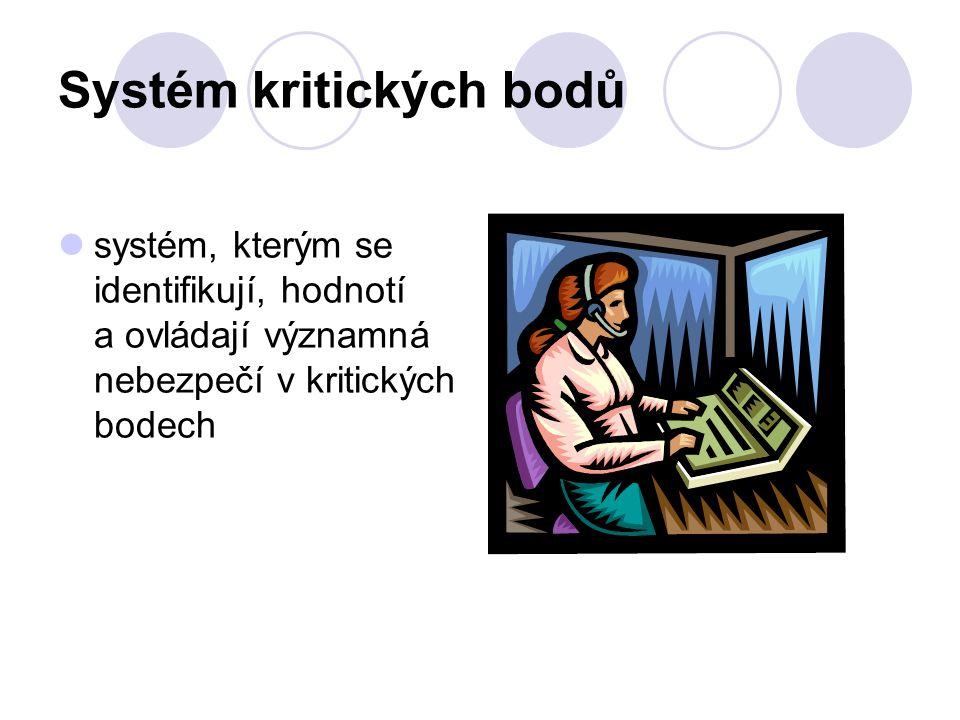 Systém kritických bodů