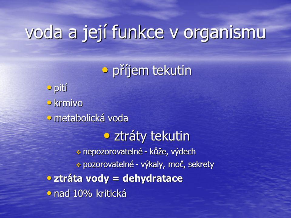 voda a její funkce v organismu