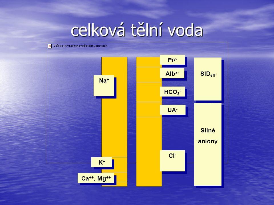 celková tělní voda Piy- SIDeff Albx- Na+ HCO3- UA- Silné aniony Cl- K+