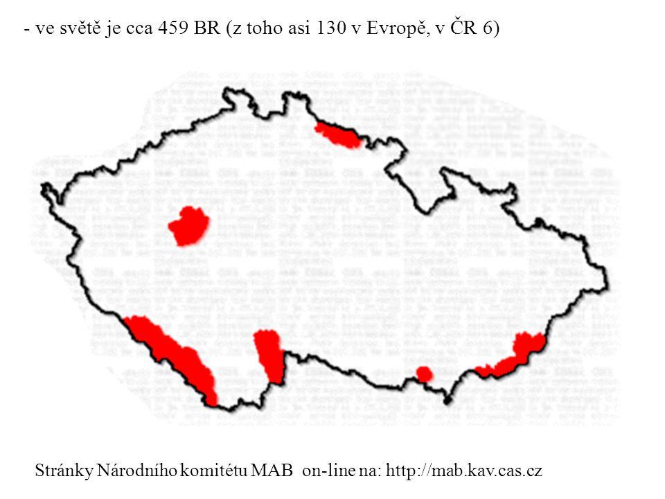 - ve světě je cca 459 BR (z toho asi 130 v Evropě, v ČR 6)