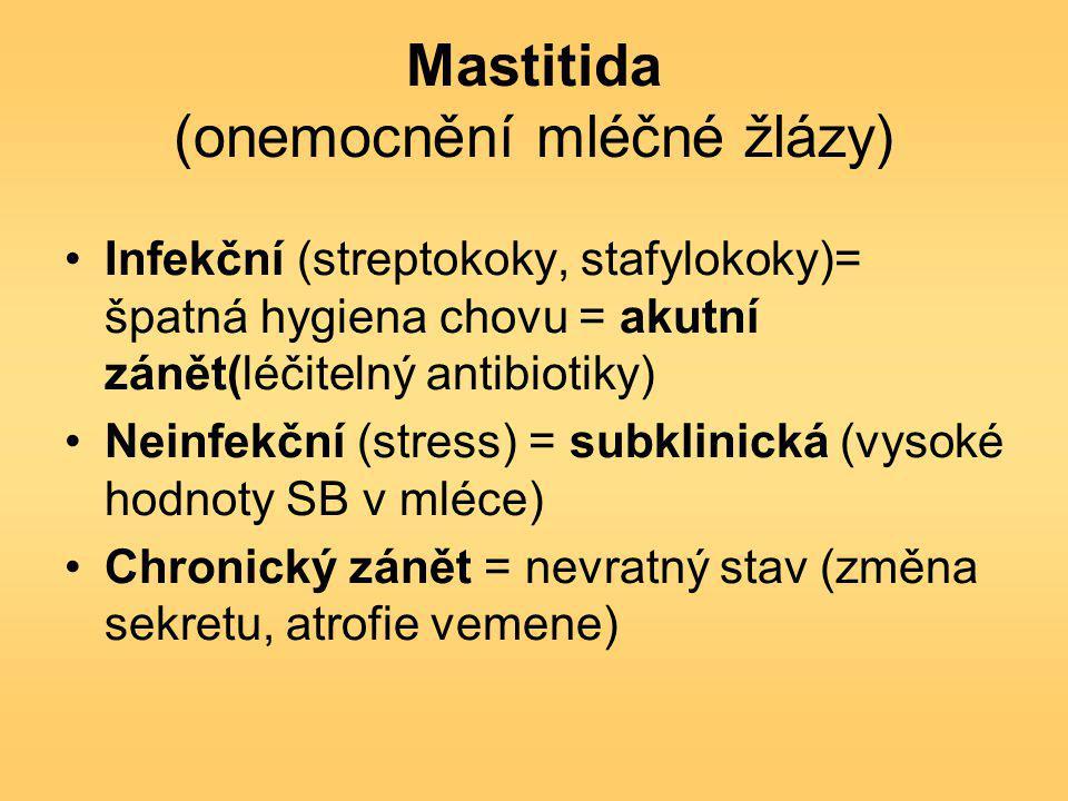 Mastitida (onemocnění mléčné žlázy)