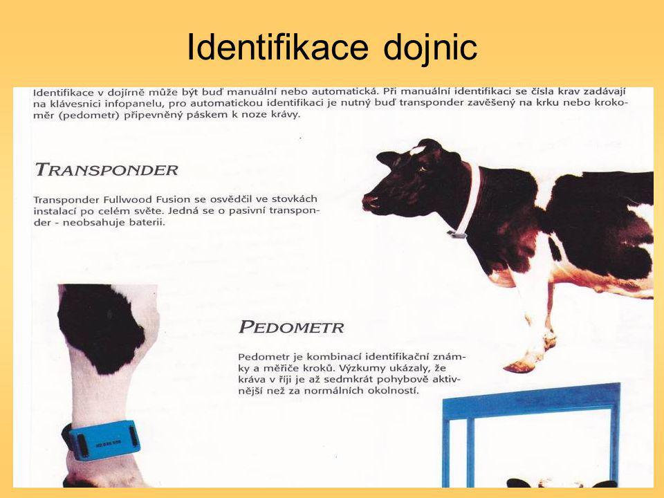Identifikace dojnic