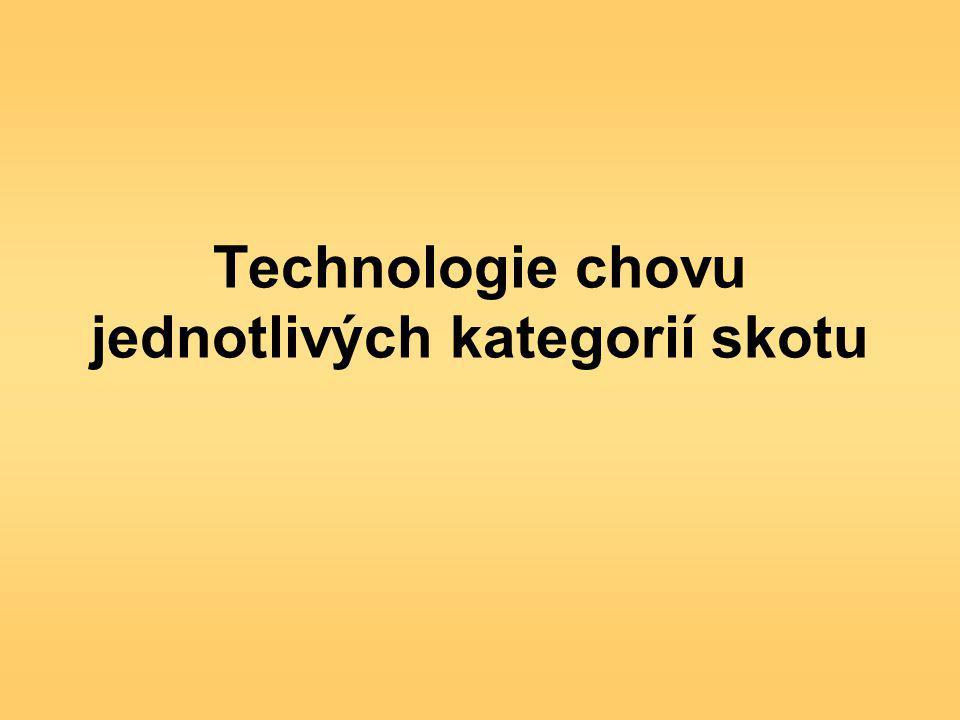 Technologie chovu jednotlivých kategorií skotu