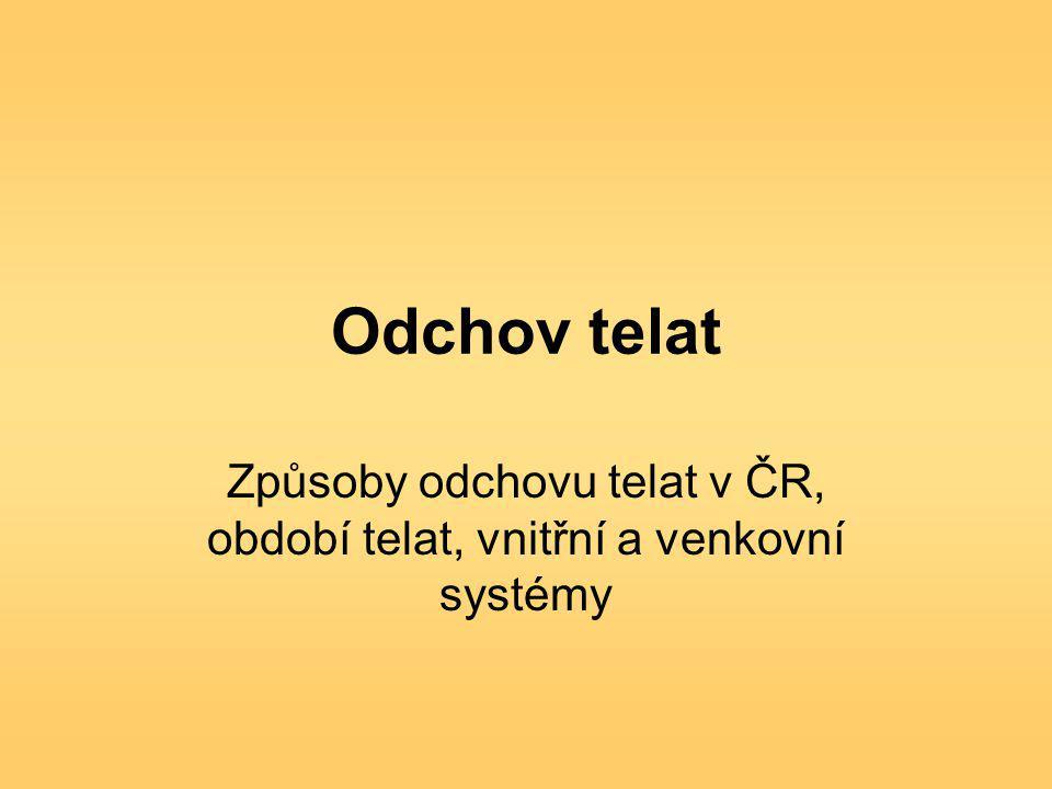 Způsoby odchovu telat v ČR, období telat, vnitřní a venkovní systémy