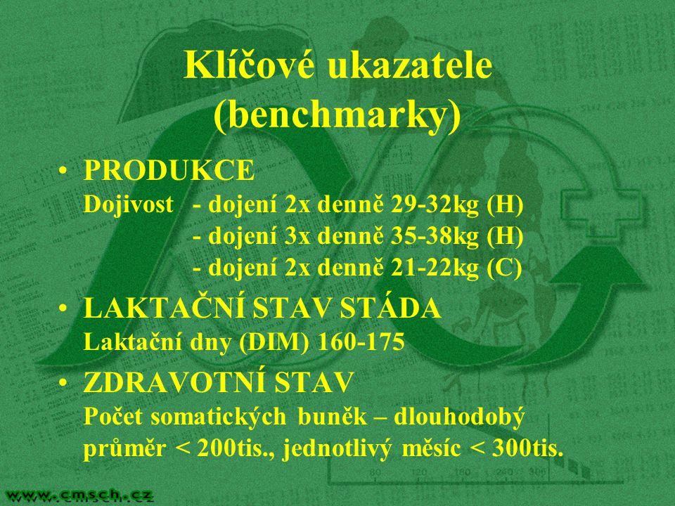 Klíčové ukazatele (benchmarky)
