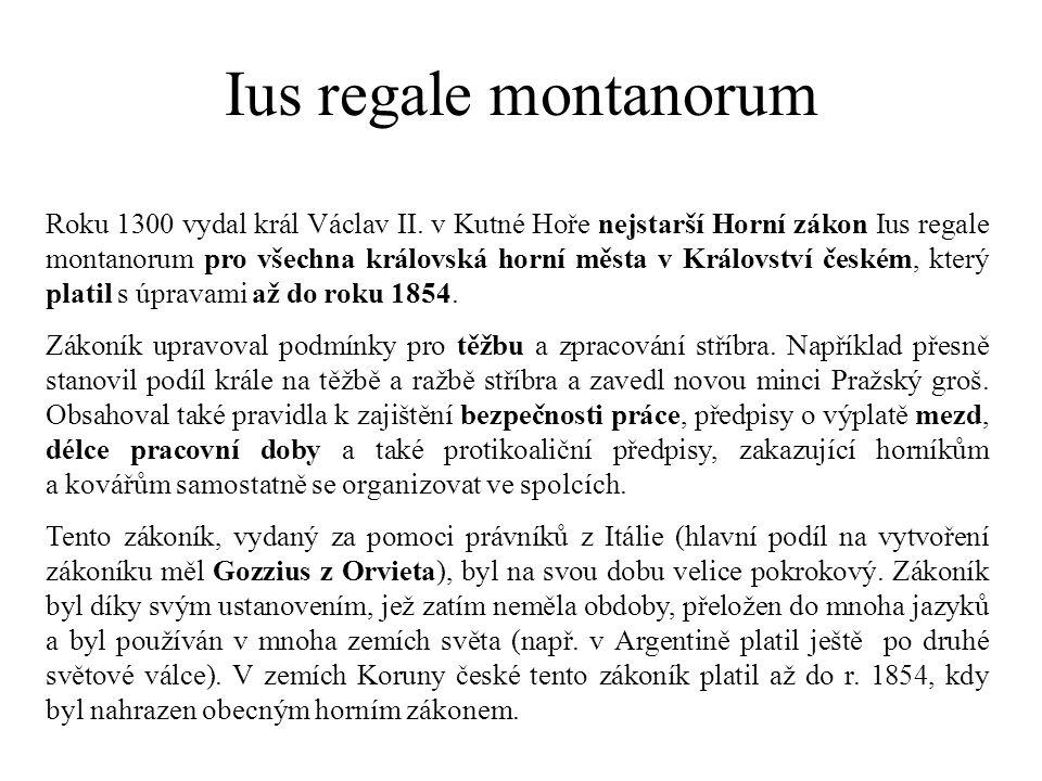 Ius regale montanorum