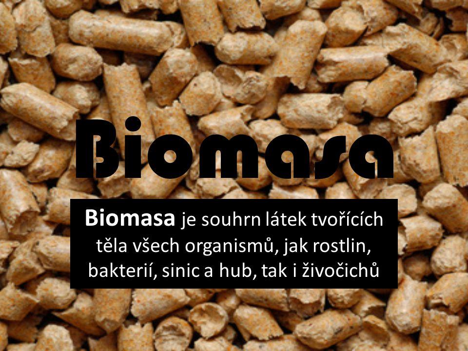 Biomasa Biomasa je souhrn látek tvořících těla všech organismů, jak rostlin, bakterií, sinic a hub, tak i živočichů.