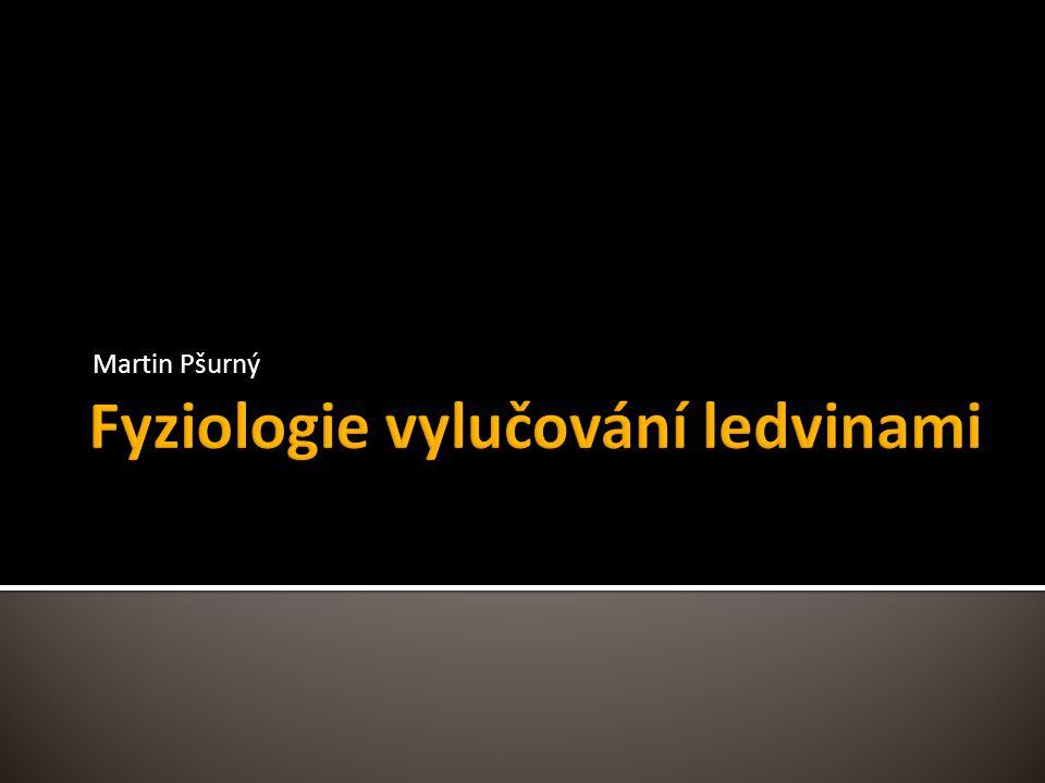 Fyziologie vylučování ledvinami