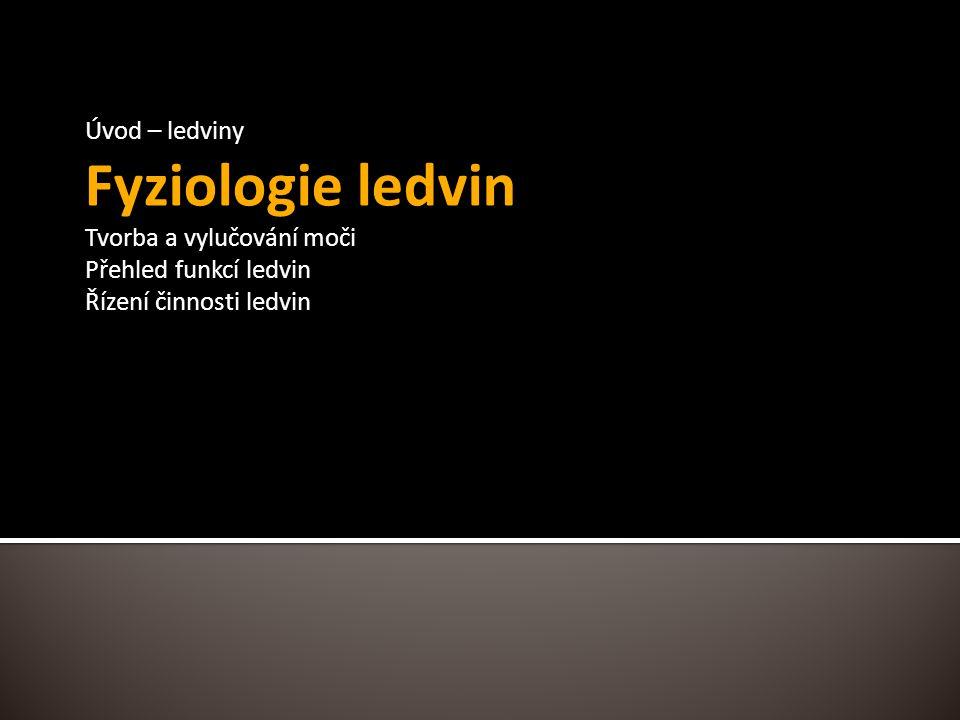 Fyziologie ledvin Úvod – ledviny Tvorba a vylučování moči