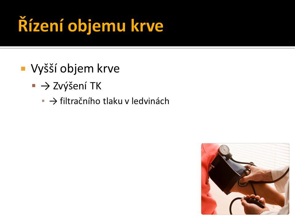 Řízení objemu krve Vyšší objem krve → Zvýšení TK