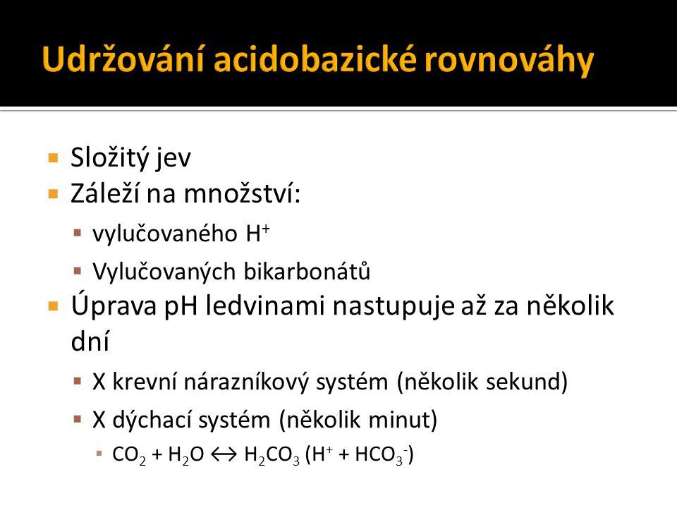 Udržování acidobazické rovnováhy