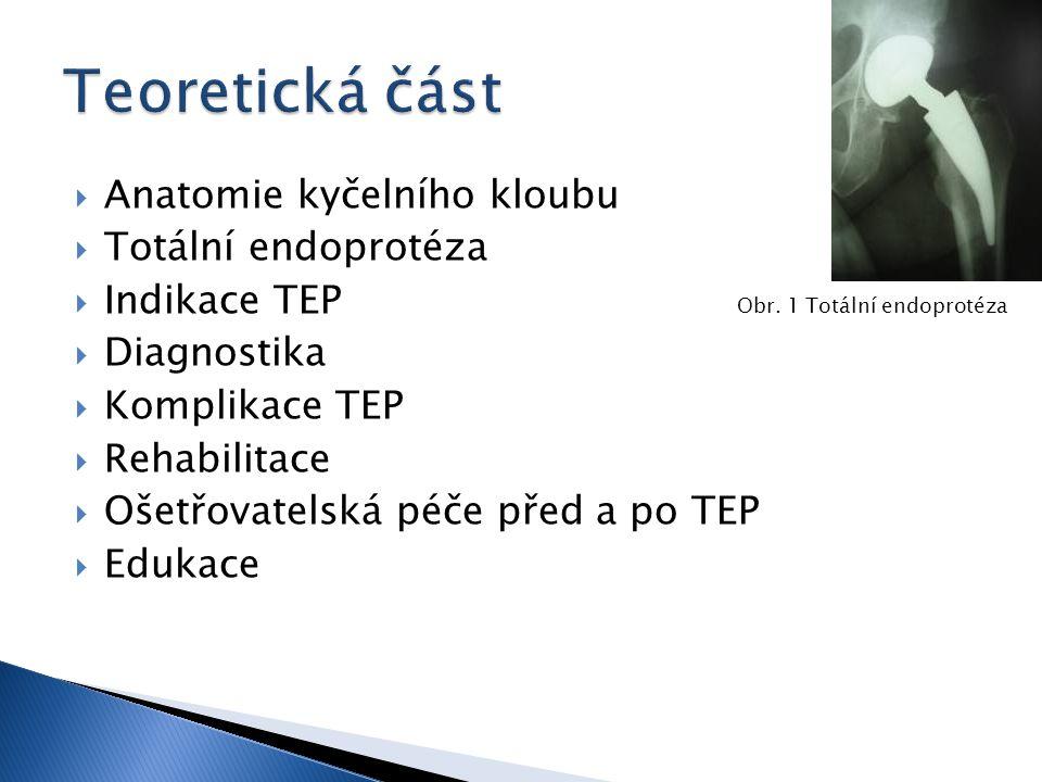 Teoretická část Anatomie kyčelního kloubu Totální endoprotéza