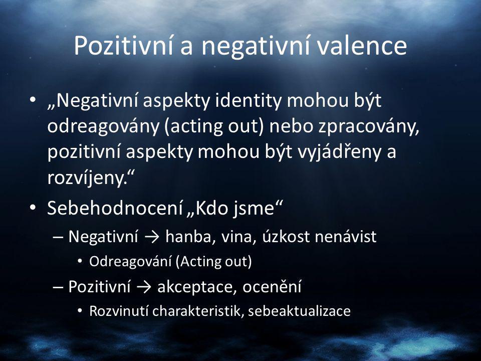 Pozitivní a negativní valence