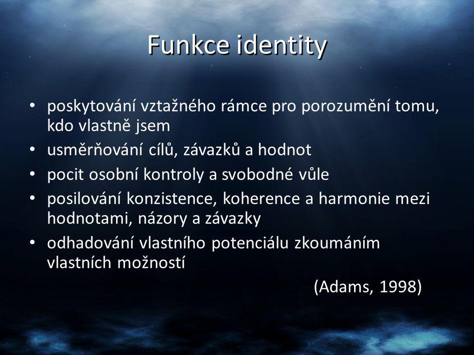Funkce identity poskytování vztažného rámce pro porozumění tomu, kdo vlastně jsem. usměrňování cílů, závazků a hodnot.