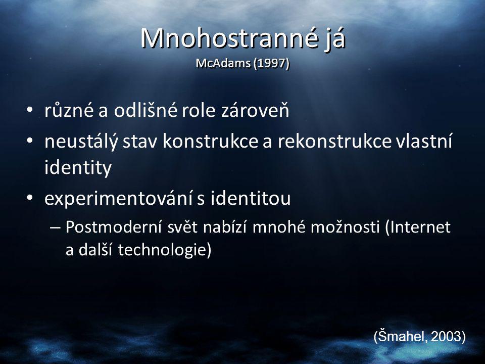 Mnohostranné já McAdams (1997)