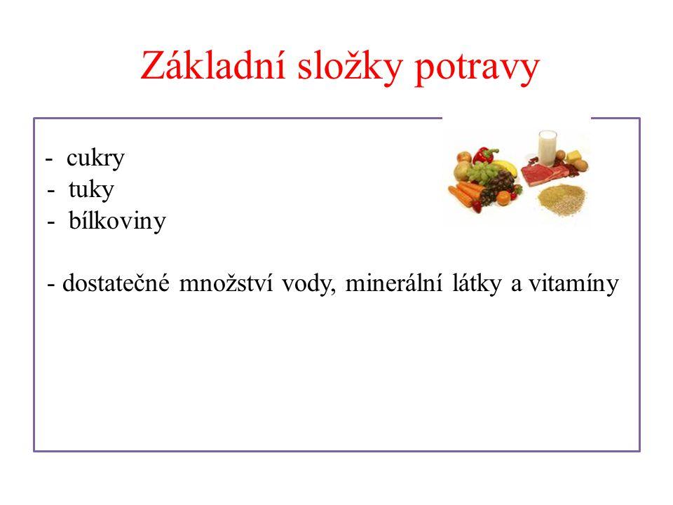 Základní složky potravy