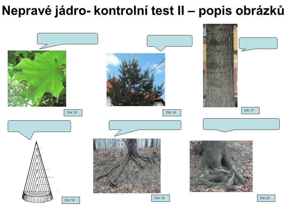 Nepravé jádro- kontrolní test II – popis obrázků