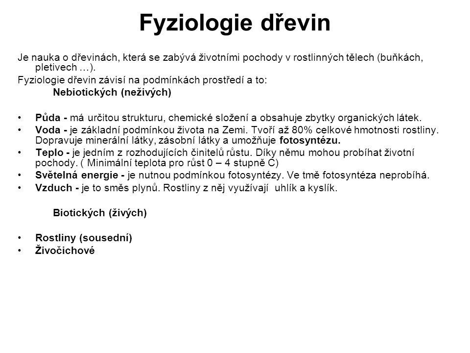 Fyziologie dřevin Je nauka o dřevinách, která se zabývá životními pochody v rostlinných tělech (buňkách, pletivech …).