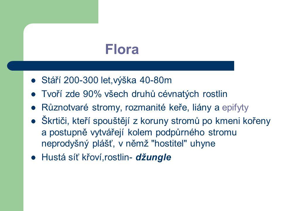 Flora Stáří 200-300 let,výška 40-80m