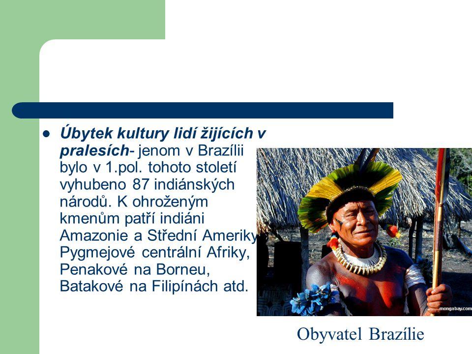 Úbytek kultury lidí žijících v pralesích- jenom v Brazílii bylo v 1