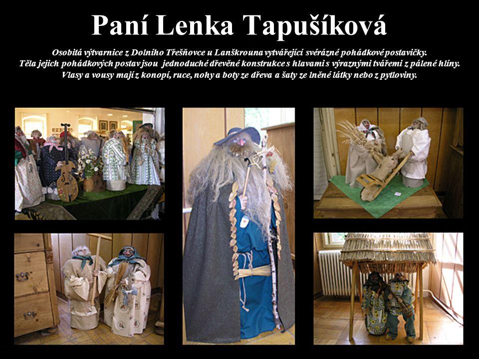 Paní Lenka Tapušíková