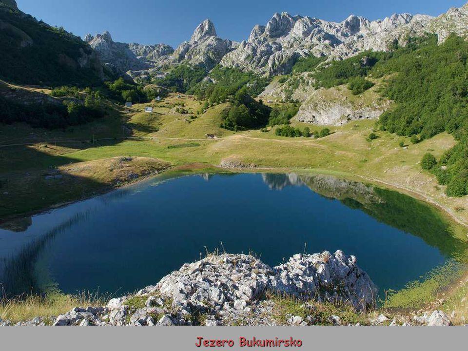 Jezero Bukumirsko