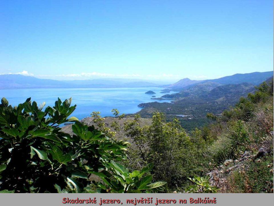 Skadarské jezero, největší jezero na Balkáíně