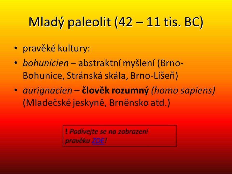 Mladý paleolit (42 – 11 tis. BC)