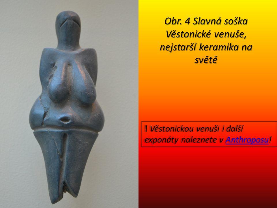 Obr. 4 Slavná soška Věstonické venuše, nejstarší keramika na světě