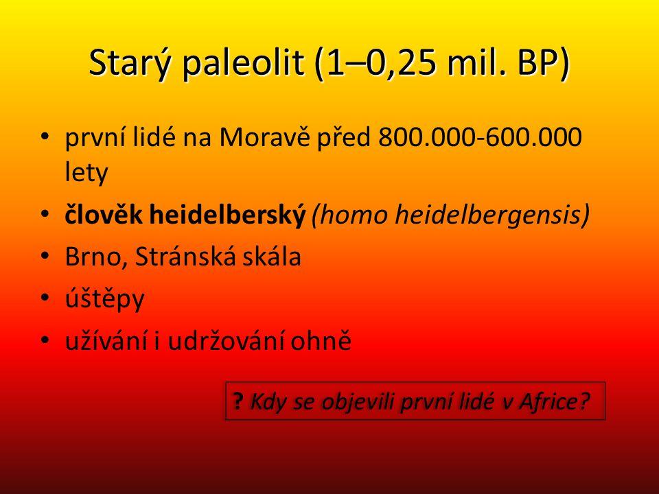 Starý paleolit (1–0,25 mil. BP)