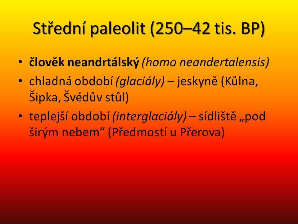 Střední paleolit (250–42 tis. BP)
