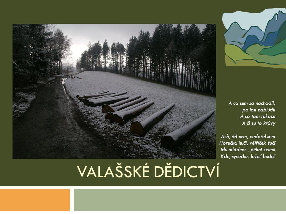 Valašské dědictví A co sem sa nachodil, po lesi nablúdil