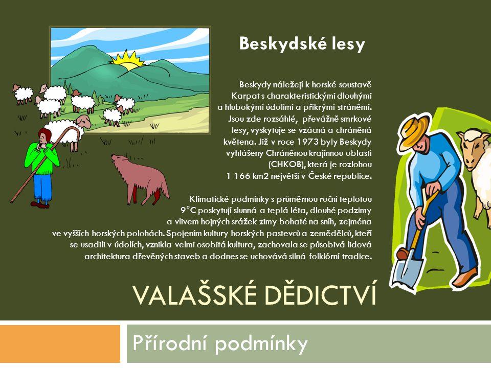 Přírodní podmínky Beskydské lesy Valašské dědictví
