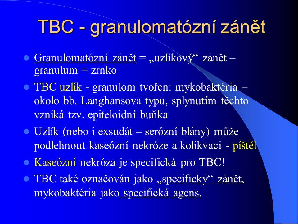 TBC - granulomatózní zánět
