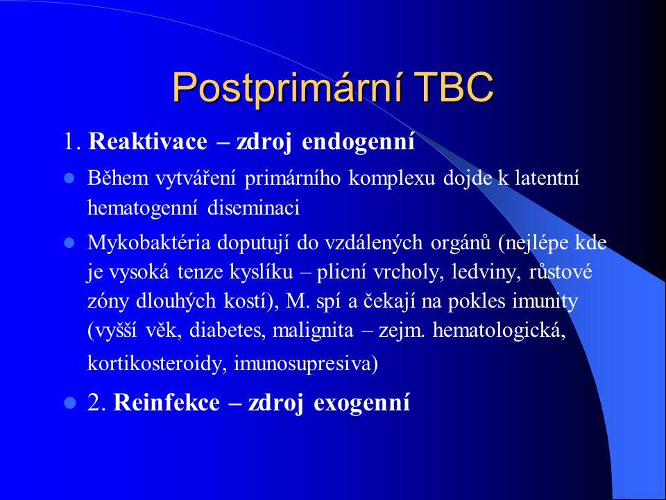 Postprimární TBC 1. Reaktivace – zdroj endogenní