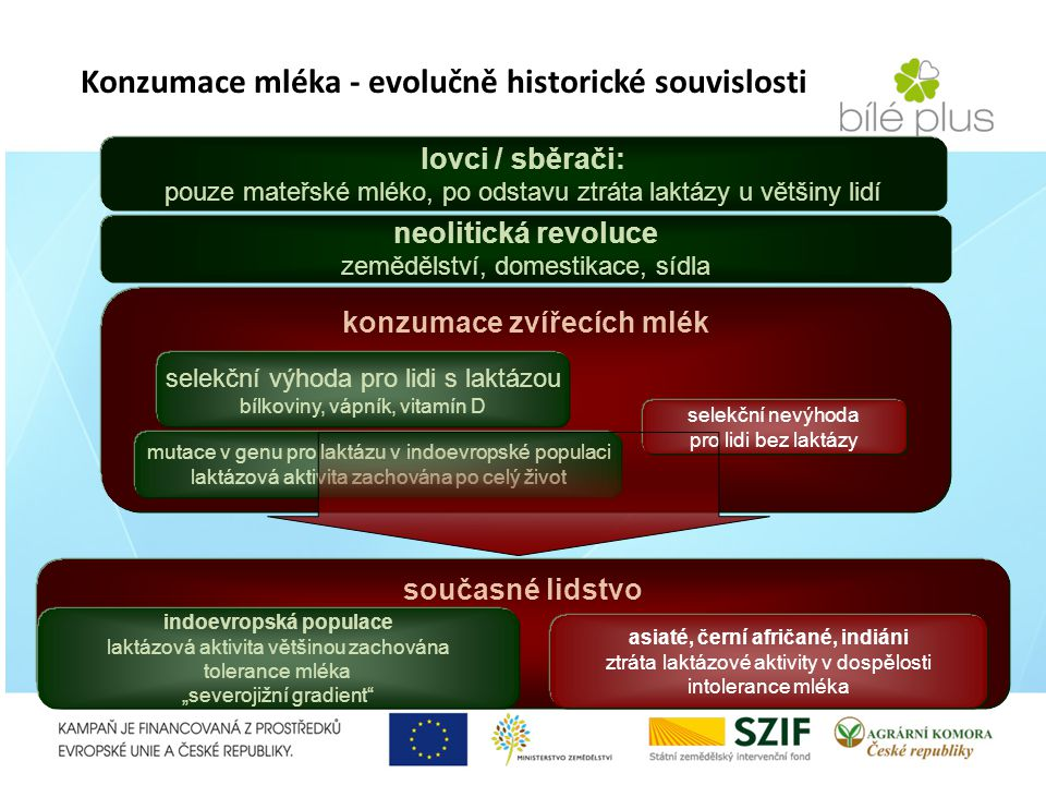 Konzumace mléka - evolučně historické souvislosti