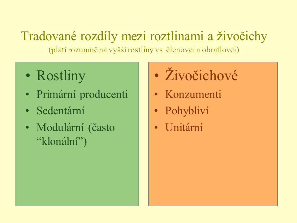 Tradované rozdíly mezi roztlinami a živočichy (platí rozumně na vyšší rostliny vs. členovci a obratlovci)