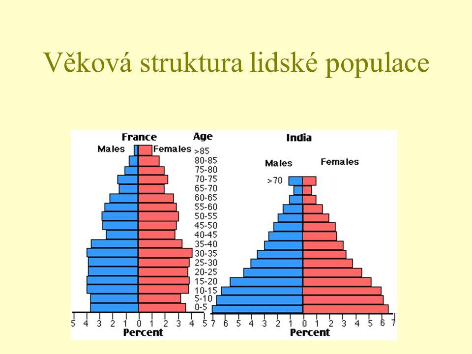 Věková struktura lidské populace
