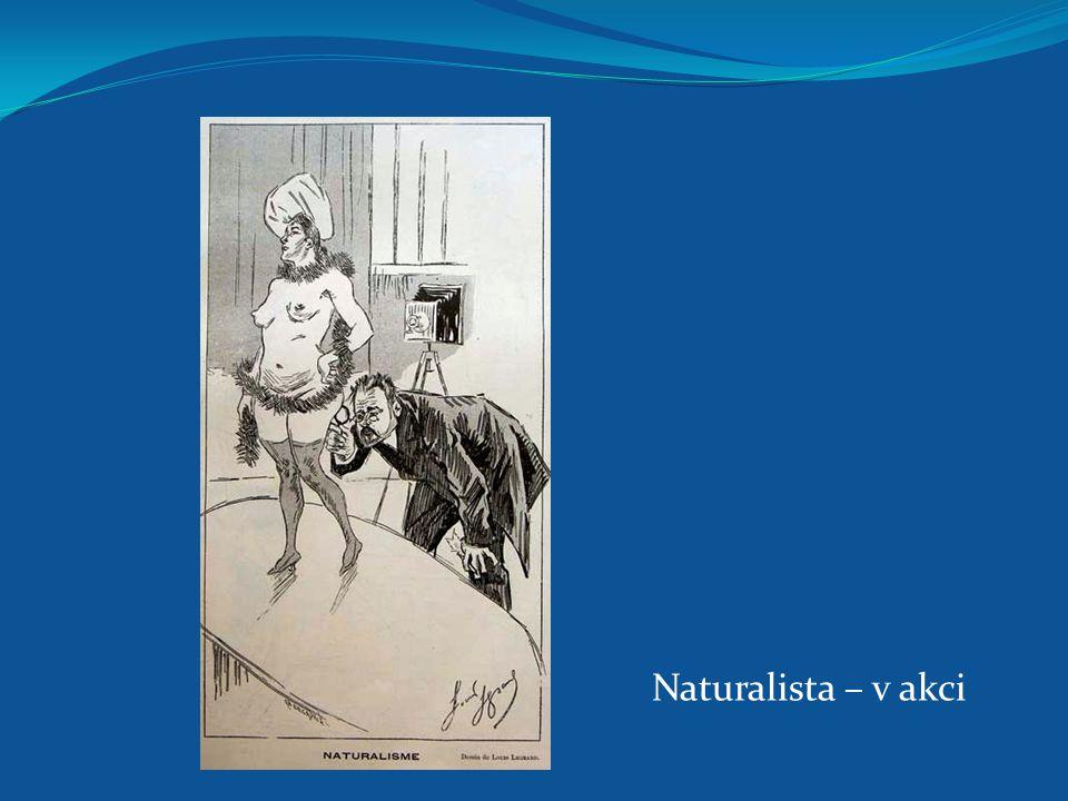 Naturalista – v akci