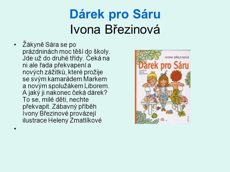 Dárek pro Sáru Ivona Březinová