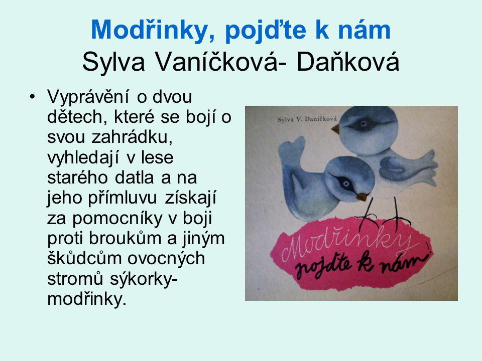 Modřinky, pojďte k nám Sylva Vaníčková- Daňková