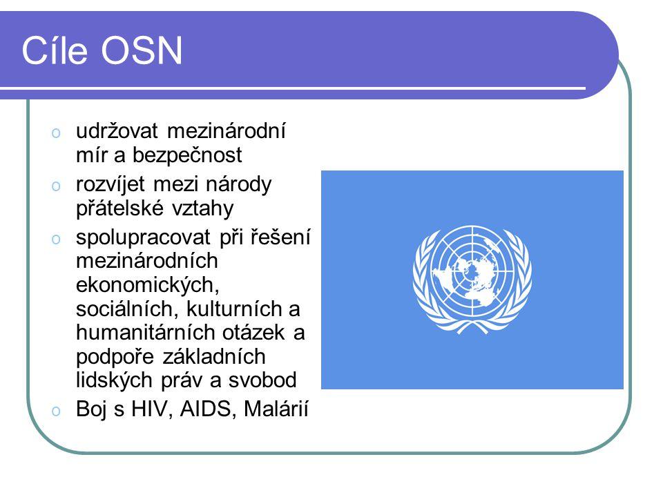 Cíle OSN udržovat mezinárodní mír a bezpečnost
