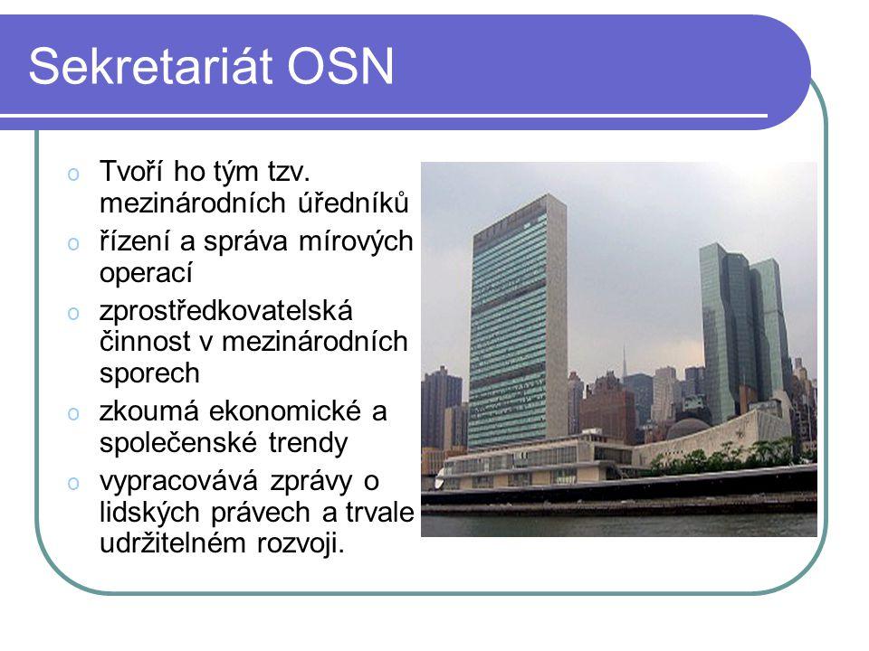 Sekretariát OSN Tvoří ho tým tzv. mezinárodních úředníků