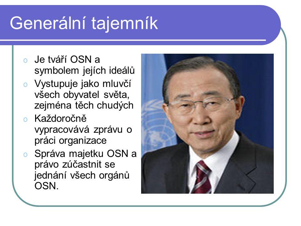 Generální tajemník Je tváří OSN a symbolem jejích ideálů