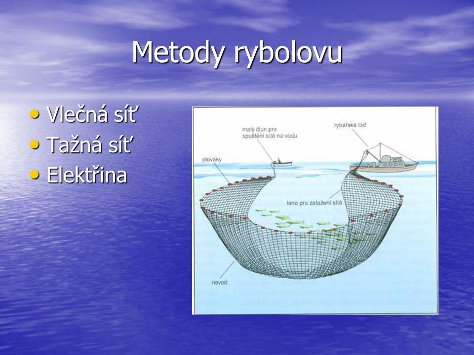 Metody rybolovu Vlečná síť Tažná síť Elektřina