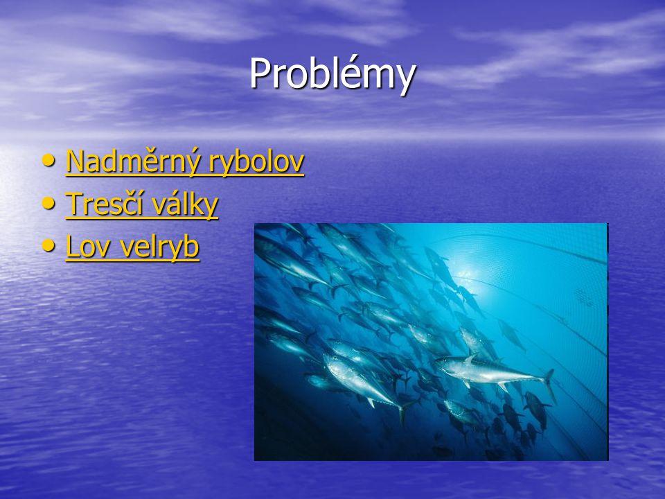 Problémy Nadměrný rybolov Tresčí války Lov velryb